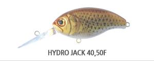 HYDRO JACK 4050F.jpg