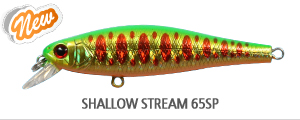 SHALLOW STREAM 65SP.jpg